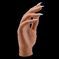 Your Perfect Hand Model Full Hand Dark